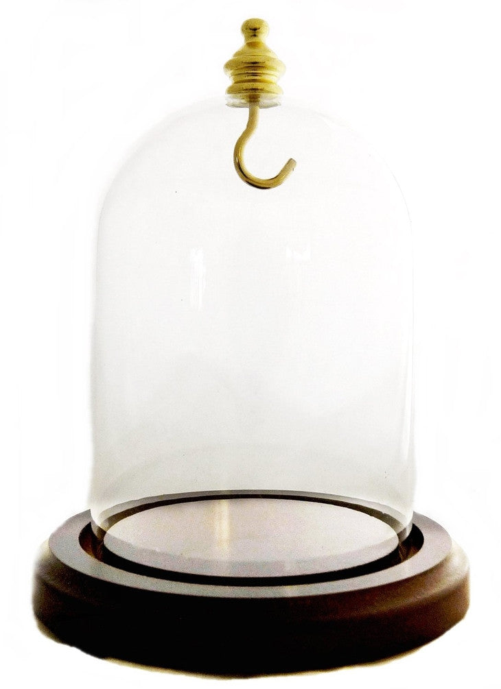 "Beautiful Walnut Base 5"" Glass Dome with Brass Hook Watch Display"