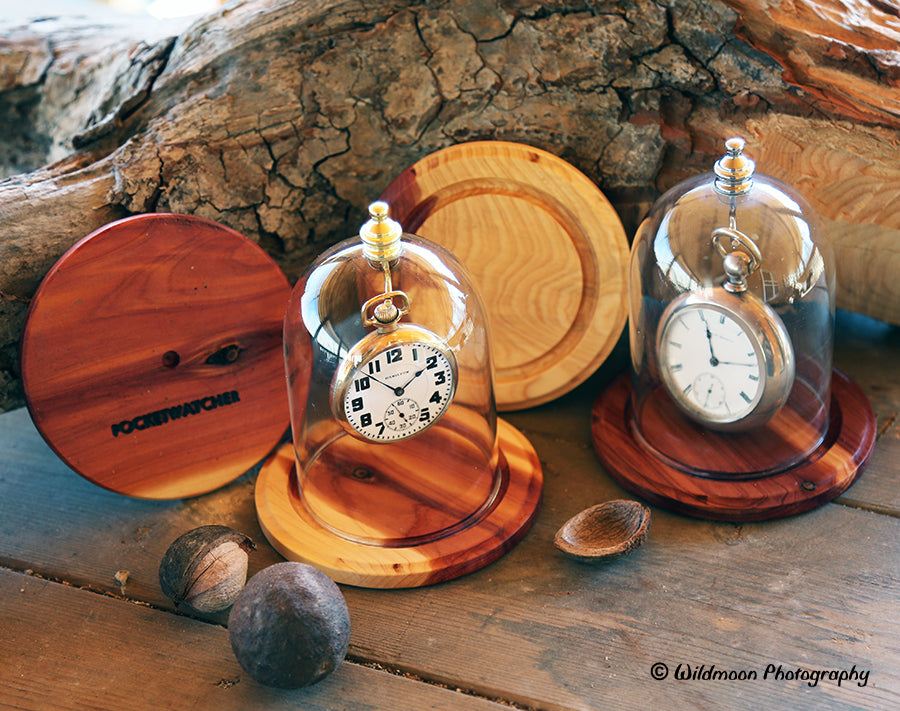 Oak base glass watch dome display