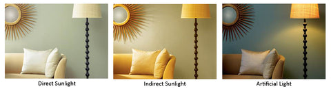 Direct Lighting, Indirect Lighting, Artificial Lighting,