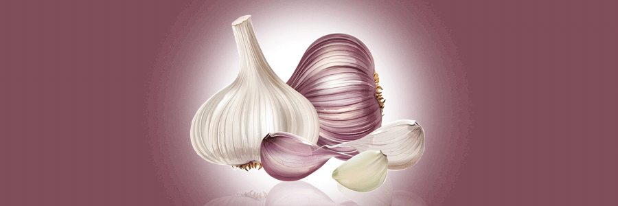 The Health Benefits of Eating Garlic