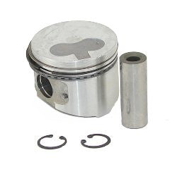 11-8754 PISTON ASY. 0.25 W/RINGS