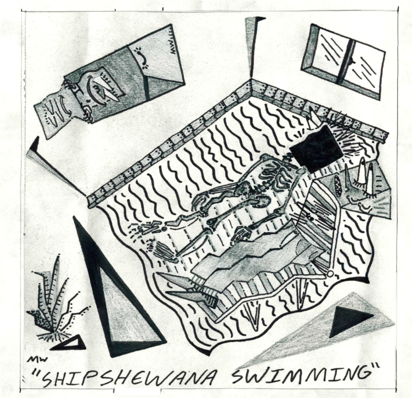 "Erik Nervous ""Shipshewana Swimming"" 7"""