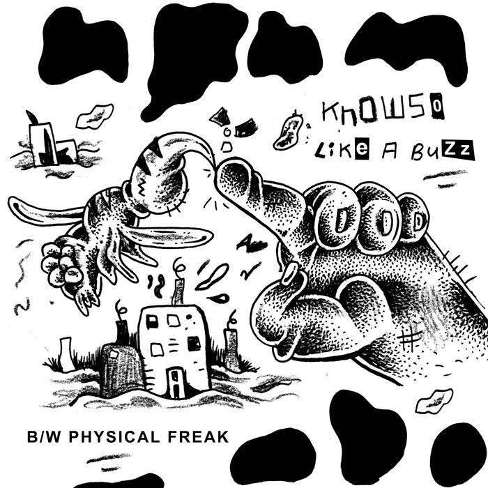 "KNOWSO ""Like A Buzz"" 7"""