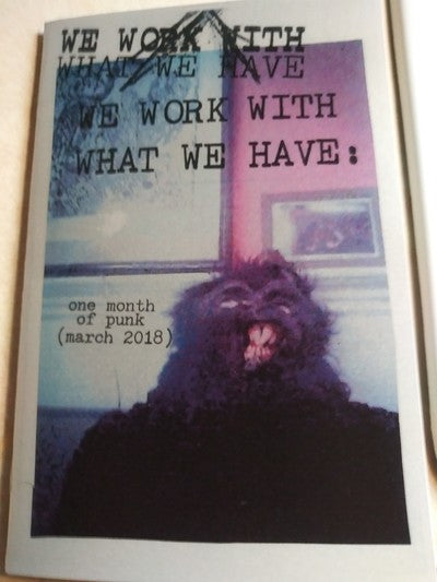 We Work With What We Have Photo Zine