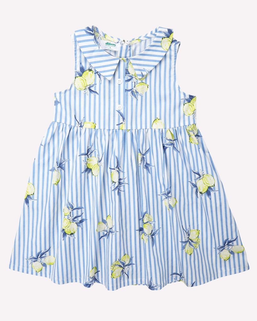 Sunshine Dress In Blue Front