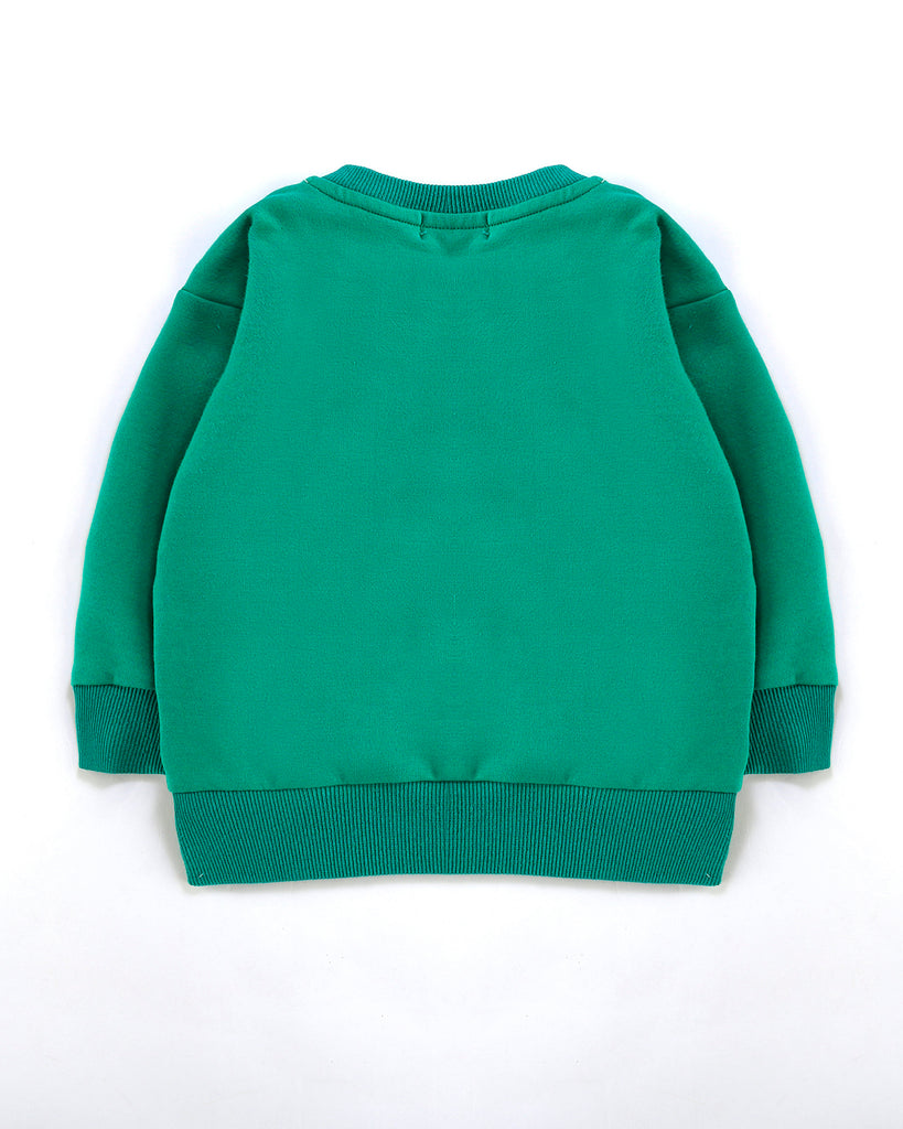 Alfaberry Signature Jumper in Green Back