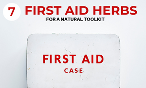 natural first aid kit with herbs
