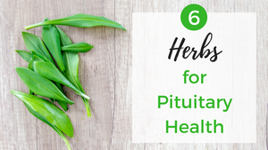 Top 6 Pituitary Herbs for a Healthy Pituitary Gland