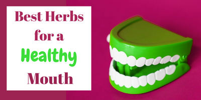 Best Herbs for Teeth and Oral Hygiene