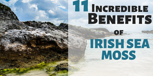 11 Benefits of Irish Sea Moss