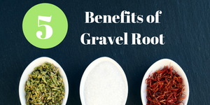 Learn the 5 benefits of gravel root that have been used for centuries.