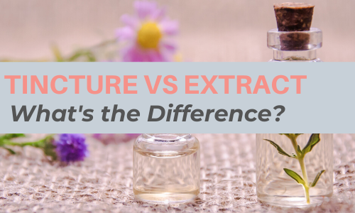 Tincture Vs Extract: What's the Difference?
