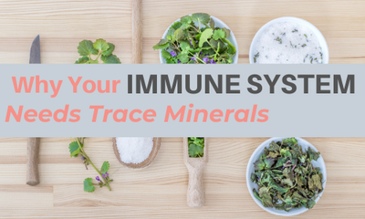 Benefits of Trace Minerals for Your Immune System