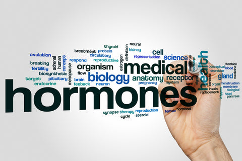 word chart about hormones