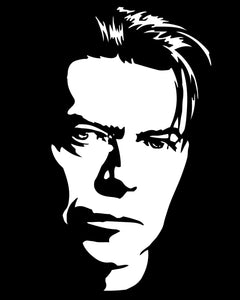 David Bowie Value Panel