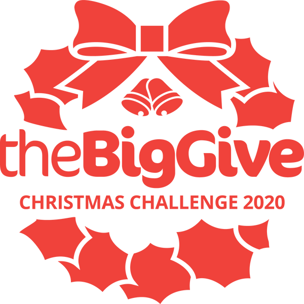 November Big Give Newsletter 2020