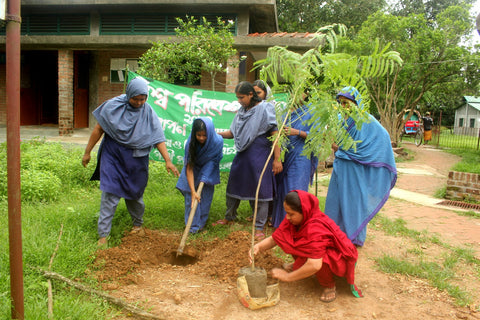 The Sreepur Village World Environment Day Bangladesh