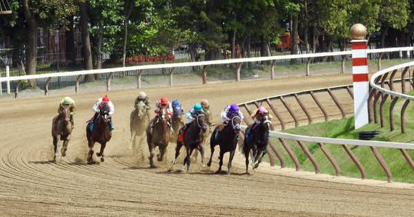 RxBets com - Premier Handicapping