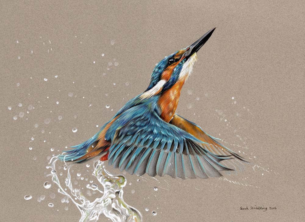 A Return to Our Earliest Art Form: Wildlife Painting with Sarah Stribbling