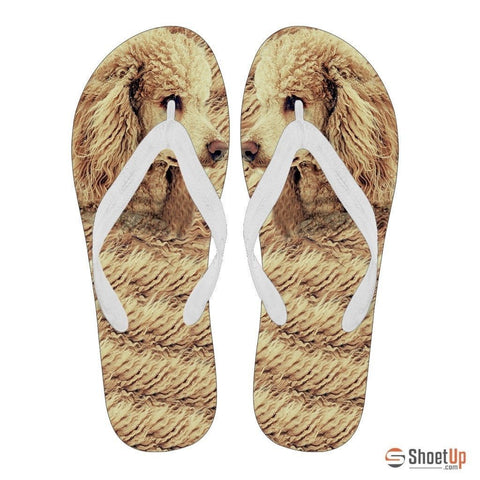 Poodle Flip Flops For Women-Free Shipping