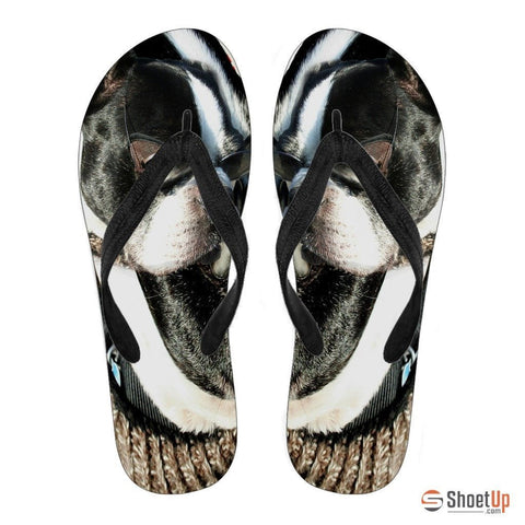 Boston Terrier Men's Flip Flops- Free Shipping