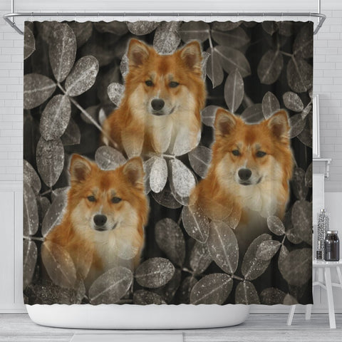 Icelandic Sheepdog On Black Print Shower Curtains-Free Shipping