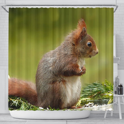 Cute Red Squirrel Print Shower Curtains-Free Shipping