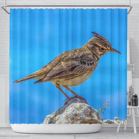 Lark Bird Print Shower Curtains-Free Shipping