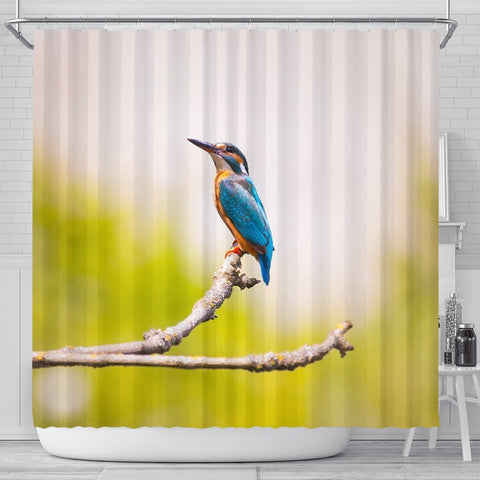 Lovely Kingfisher Bird Print Shower Curtains-Free Shipping