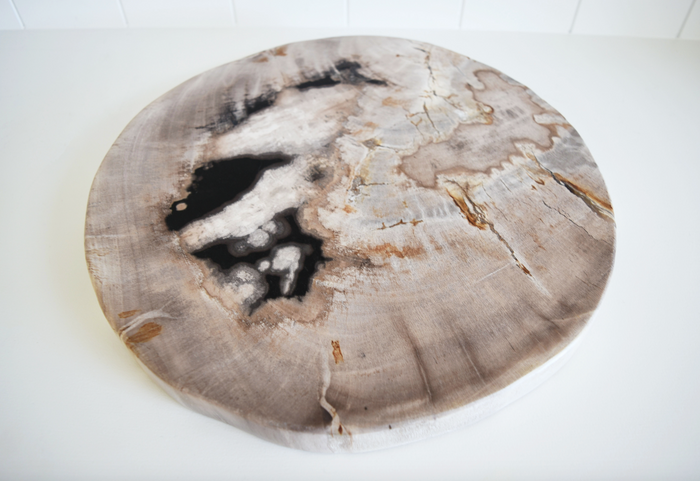 Petrified Wood Slab - Ivory + Black - SaffronAndPoe.com