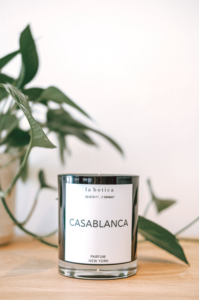 One La Botica Casablanca candle with plant against a white background on a oak wood surface - Saffron and Poe