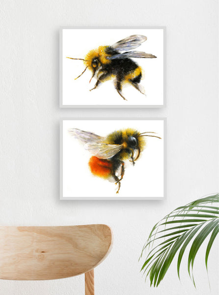 Bumble Bee - Set of 2 - Watercolor Art Print, small gift, wall decor