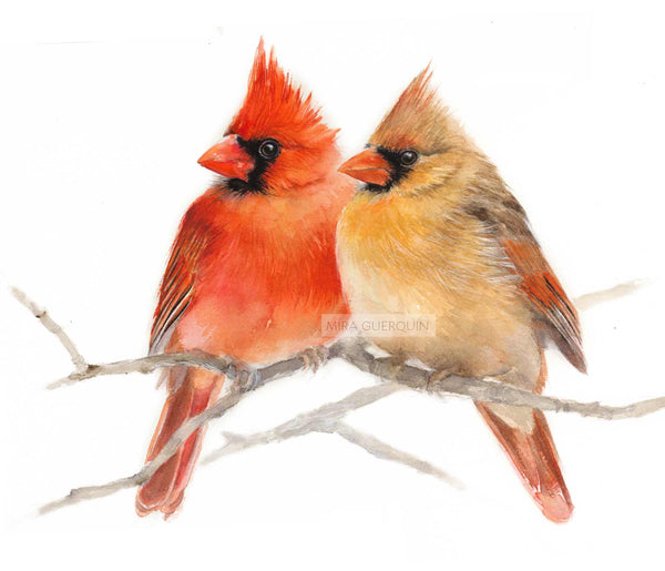 Pair of Cardinals Watercolor Archival Print
