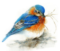 Bluebird Watercolor - Archival Print