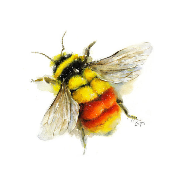 Bee Watercolor Archival Print Bumblebee