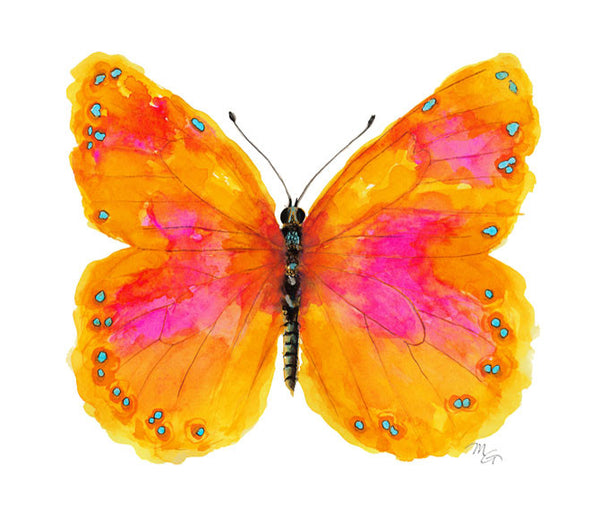 Butterfly Watercolor Archival Print