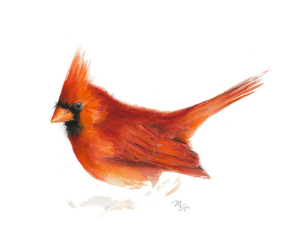 Cardinal Watercolor Archival Print