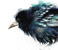 Crow Watercolor Archival Print
