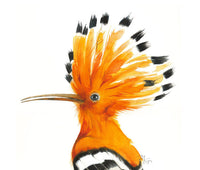 Hoopoe Watercolor Archival Print