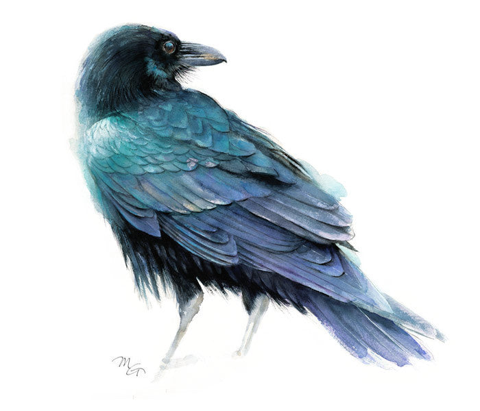 Raven Watercolor Archival Print