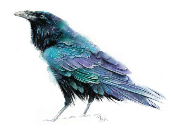 Raven Watercolor blue purple black teal bird Archival Print