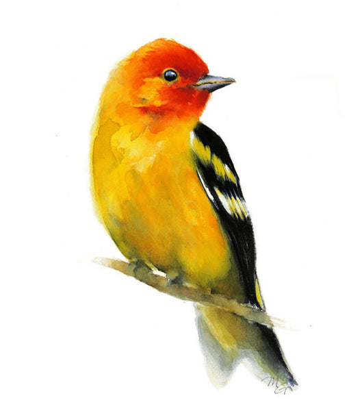 Song Bird Watercolor Archival Print