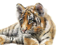 Tiger Watercolor Archival Print