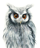 Owl Watercolor Archival Print