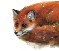 Fox Watercolor Archival Print