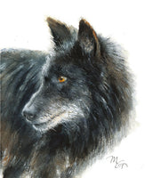 Black Wolf Watercolor Archival Print