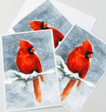 Red Cardinal Note Card Set, Winter Holiday Card - Free Shipping
