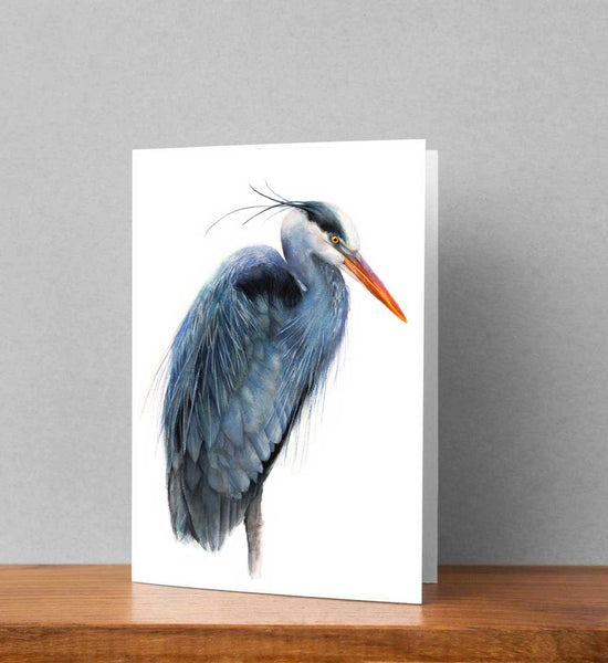 Great Blue Heron Card set - Free Shipping