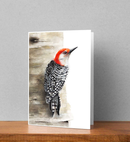 Red-bellied Woodpecker Note Card Set - Free Shipping