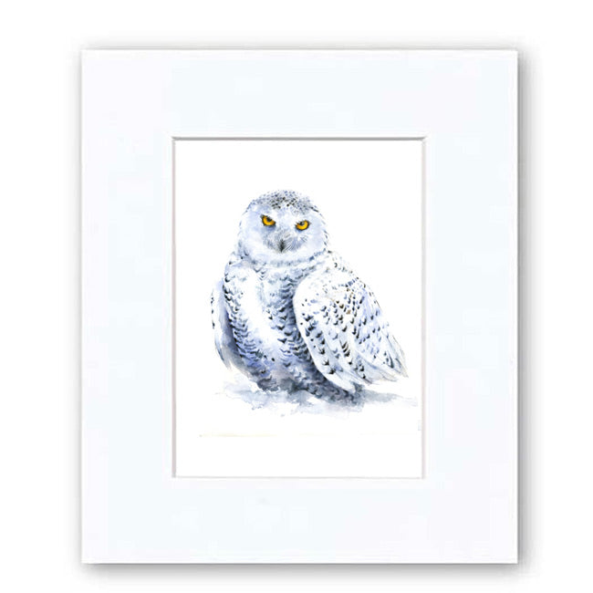 Snowy Owl Watercolor Archival Print